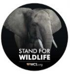 WCS sticker-elephant